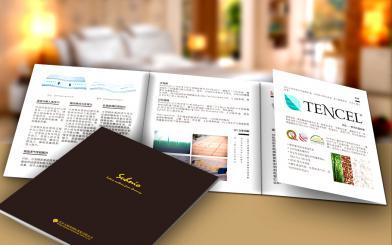 北京太阳堡四折页设计