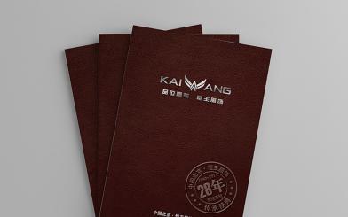 凯王服饰产品画册